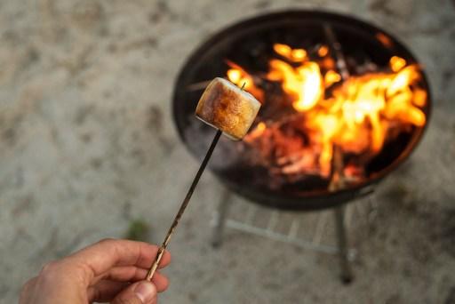 Roasted marshmallow on wooden stick near fire