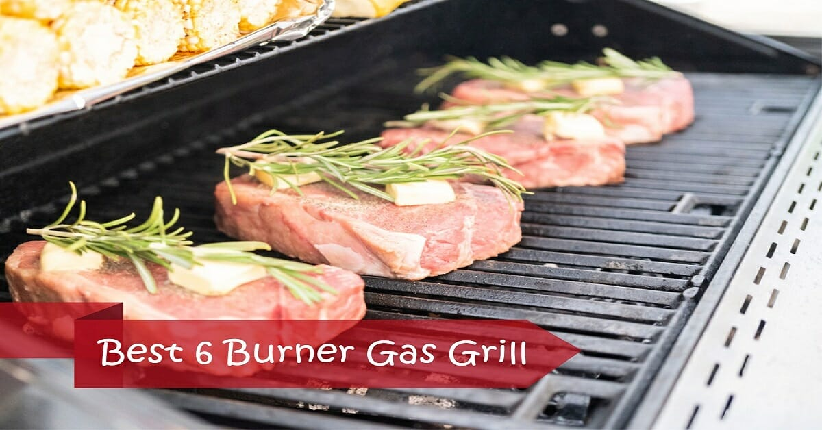 Top 7 Best 6 Burner Gas Grills in 2019 (The Ultimate Guide)
