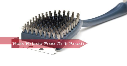 Best Bristle free grill brush