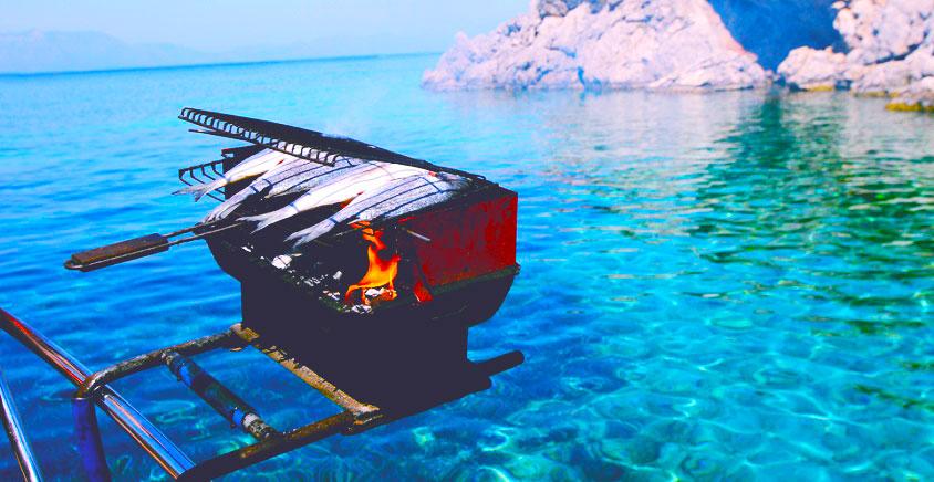 pontoon boat grills