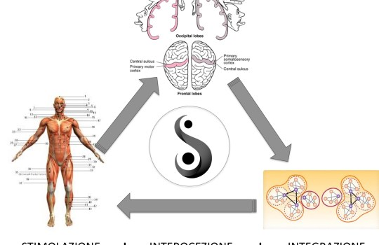 Neuromodulazione in Posturologia