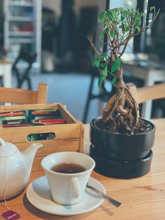 Bonsai als Must-Haves für das Büro