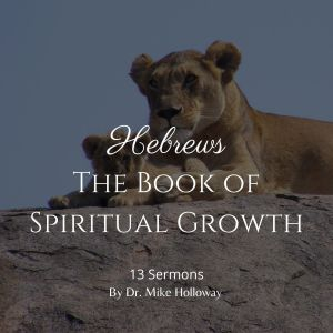 Hebrews – The Book of Spiritual Growth