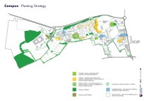 Campus - Planting Strategy