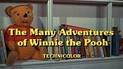 The Many Adventures Of Winnie The Pooh Pictures Cartoons
