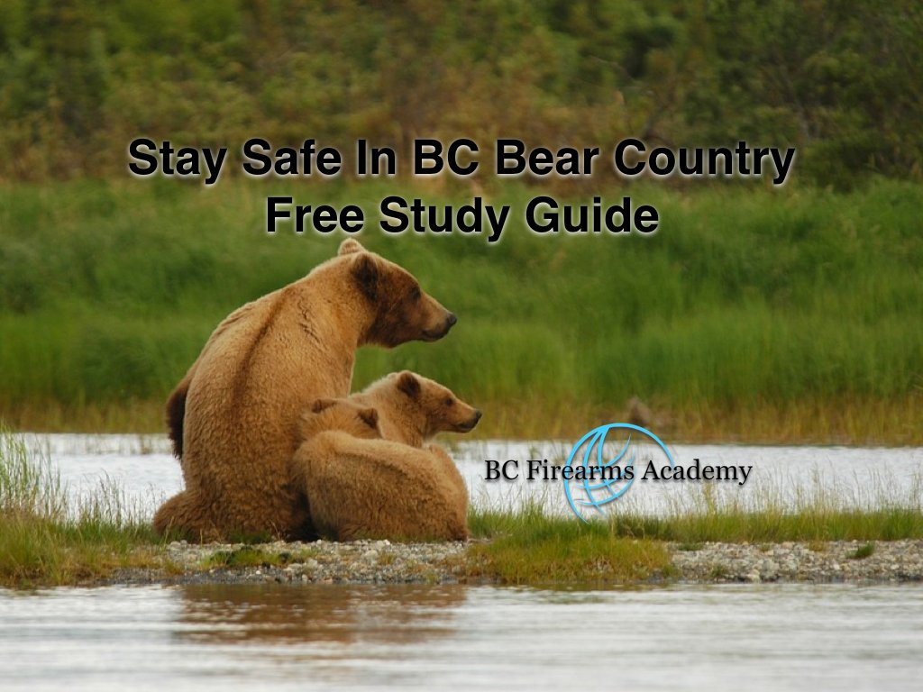 Free Bear Safety Resource & STAY SAFE in Bear Country Course