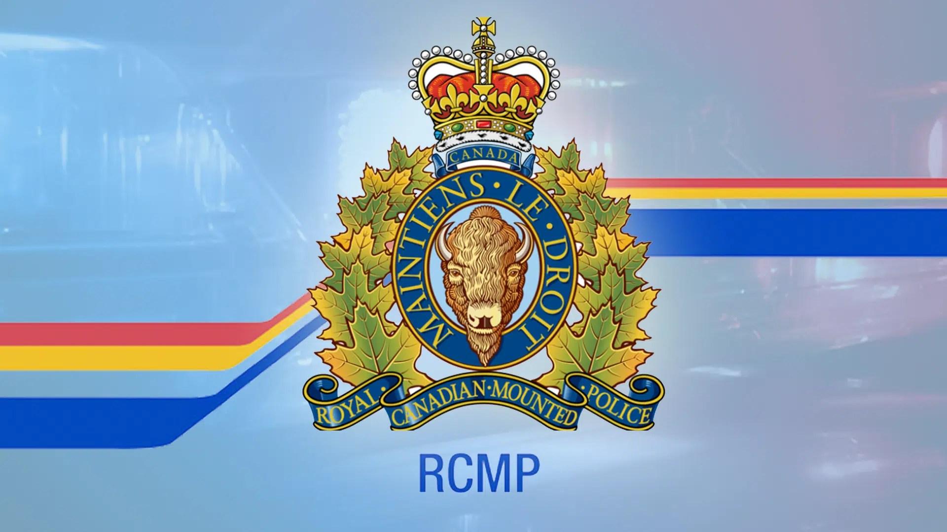 Image result for rcmp firearms program