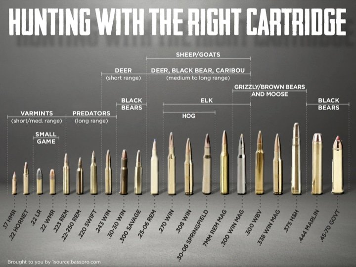 Rifle Caliber Selection Chart