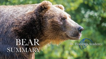 Free Online Bear Safety Resource & STAY SAFE in Bear Country Course.