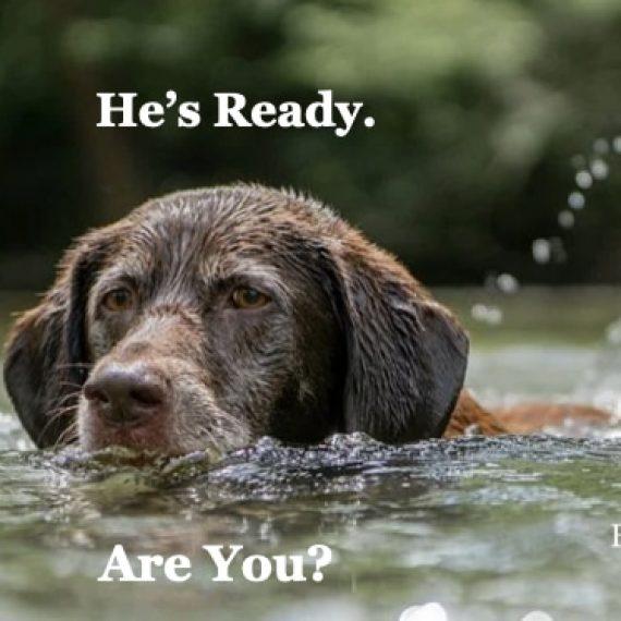 Hunting Season Starts September 10 2020