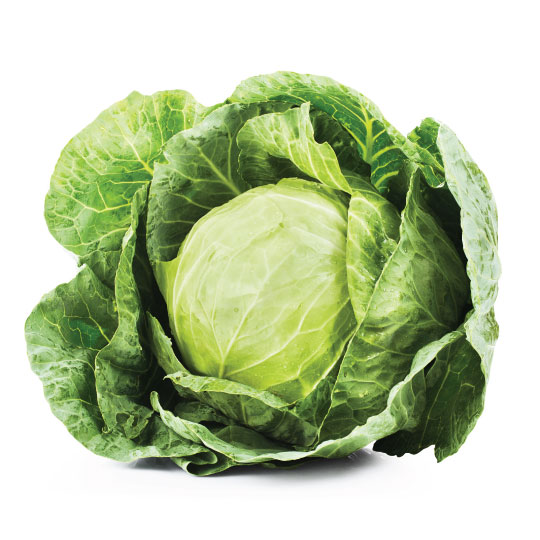 cabbage for dehydration