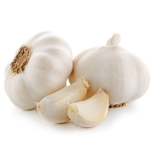 Garlic for dried garlic ingredients including powder and granules
