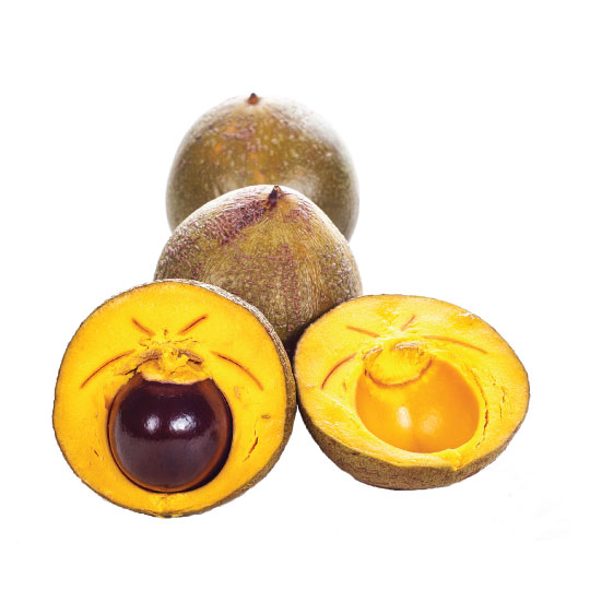 Lucuma for dried fruit ingredients, gluten-free baking, healthy baking, low glycemic sugar replacement, ice cream