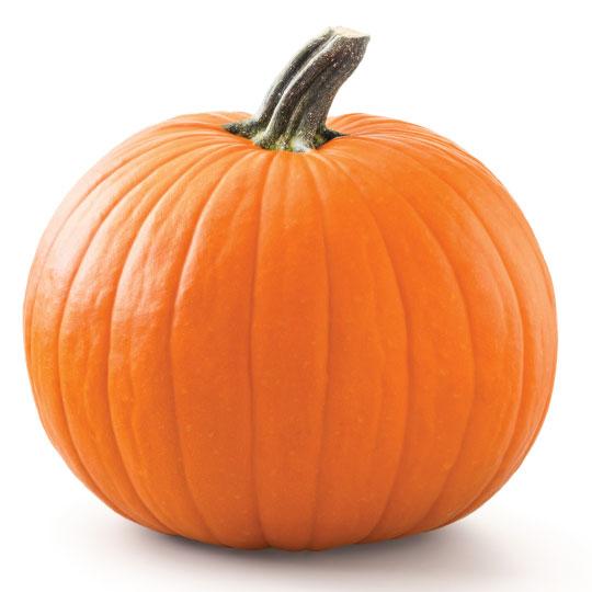 Pumpkin for dehydration