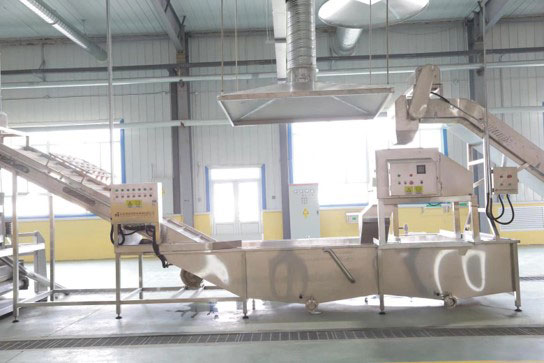 Washing and optical sorting at BCFoods dehydration facility in Hebei, China
