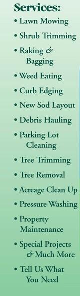 bcj's tree & lawn care service