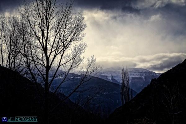 Dark Landscape Bcl
