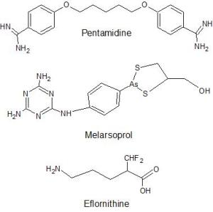 Currently used drug therapies for HAT. Figure created by Gabrielle Whitney via ChemSketch.