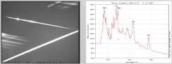 Taurid Fireball Spectra from Poster
