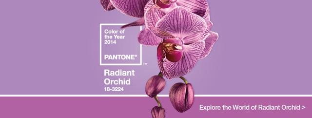 orquidea radiante color ano 2014 radiant_orchid