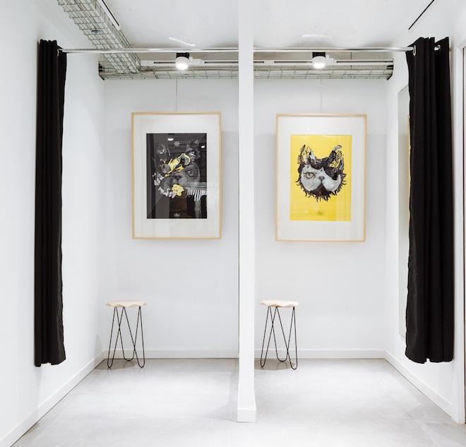 suara store tienda gatos barcelona