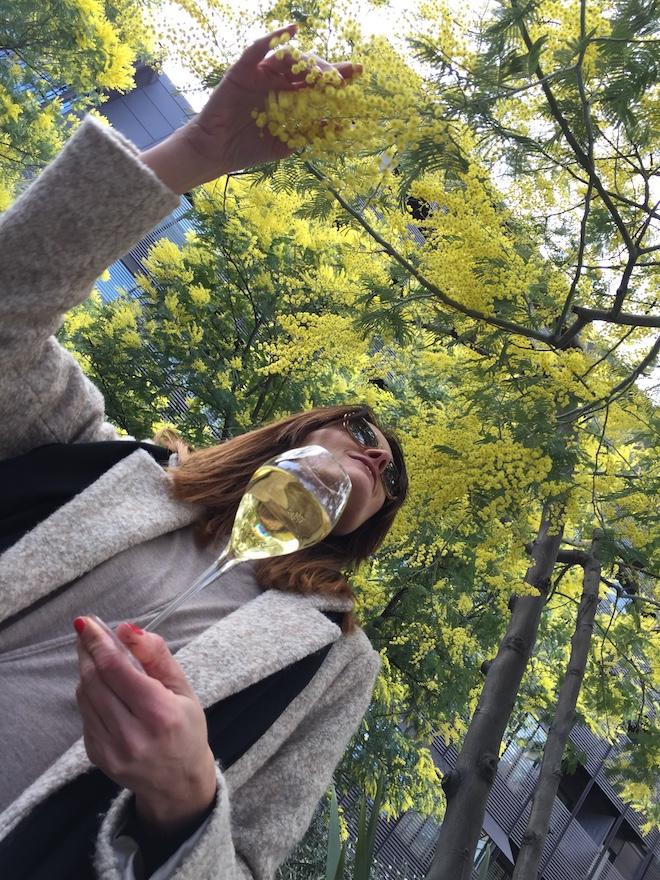 jardin mimosa mandarin barcelona