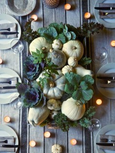 Gourds and Cabbage with Vegetable Foliage by Karin Lidbeck
