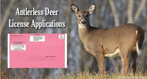 Anterless Deer Application
