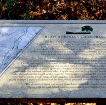 BCTrust's Beaver Brook Valley Preserve