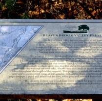 BCTrust's Beaver Brook Valley Preserve