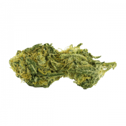 Buy-Pineapple-Express-Weed-Strain