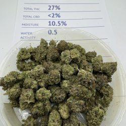 El Jefe weed strain
