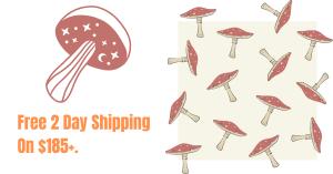 Psychedelic Mushroom Strains - Buy Shrooms