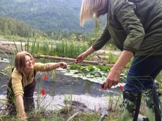 All smiles when we're restoring wetlands!
