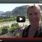 Visiting Noble Ridge Winery in Okanagan Falls, BC