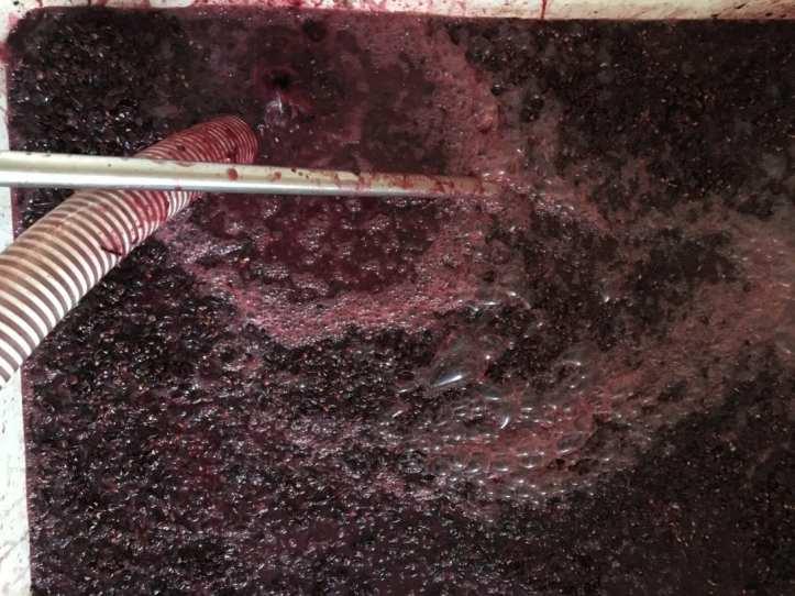 Millstone Winery