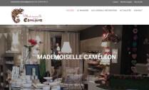 mademoiselle-cameleon