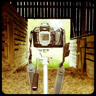 barn shoot