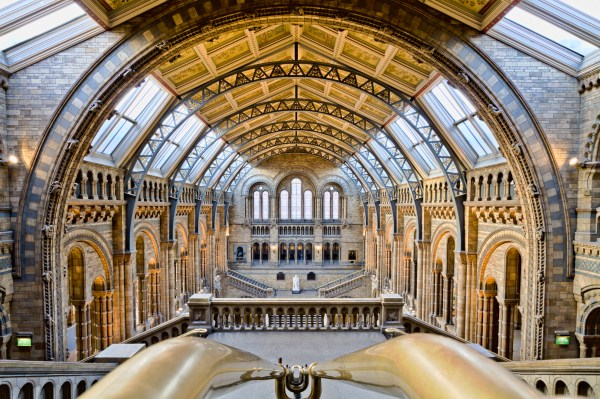 Natural History Museum ' Hope People Discover Species With Open Data'