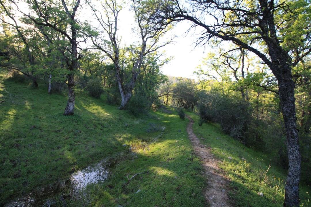 Ranch 6 (2)