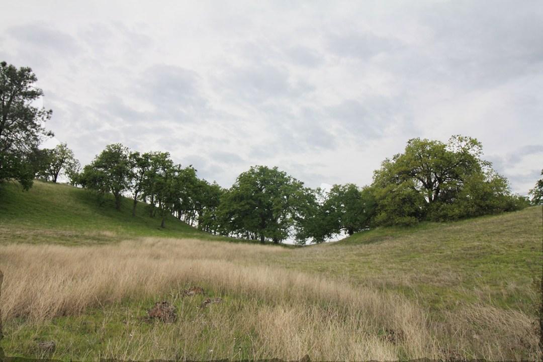 Fillmore Hill 3-13-18 (5)
