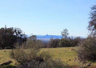 Ranch 9 – Excelsior's finest equestrian property