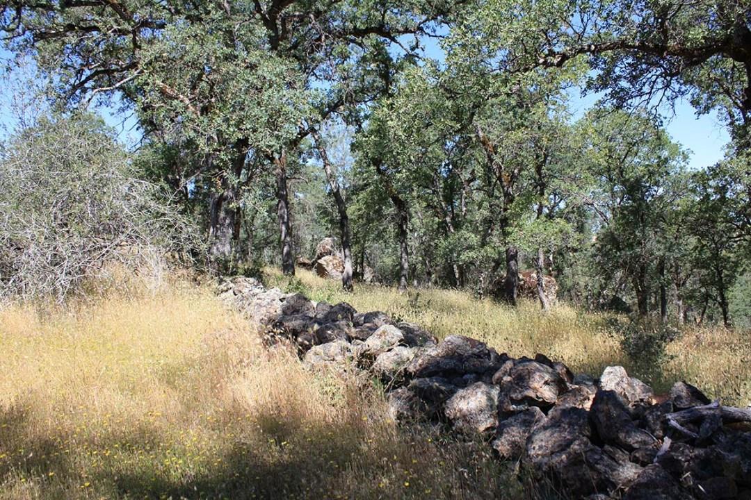 Ranch 9 (7)