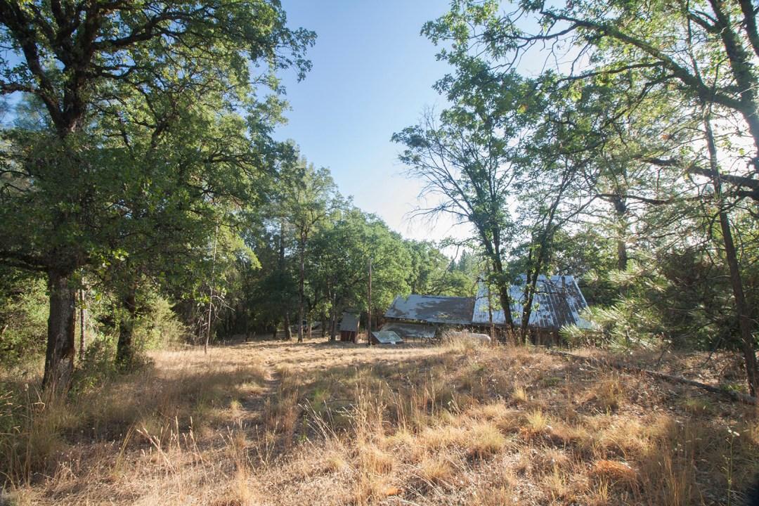 Friendsview Farm - meadow with views
