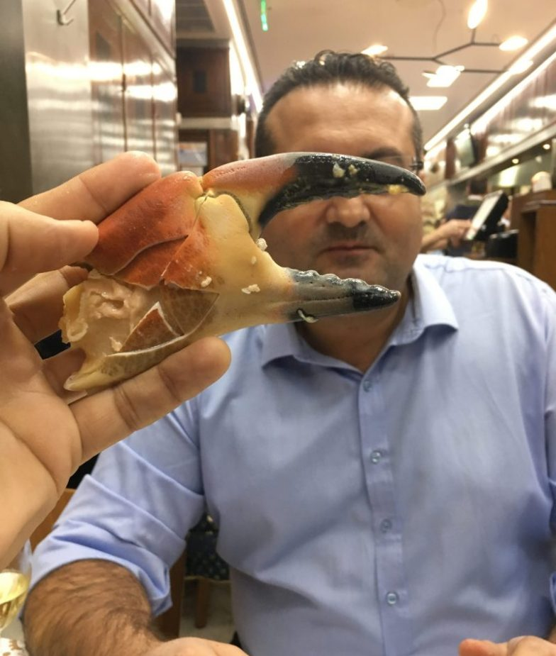 Ufuk vs Captain Crab