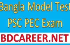 PSC PEC Bangla Model Test