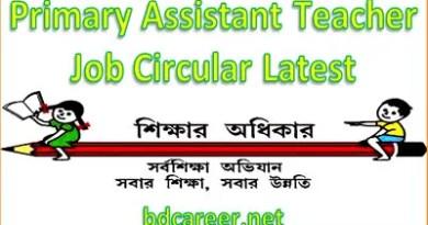 Primary Assistant Teacher Job Circular