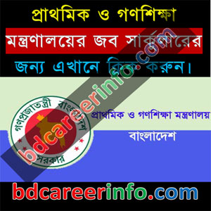 Primary Education Job Circular 2018