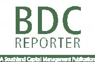 BDC-Reporter-Logo-v02c