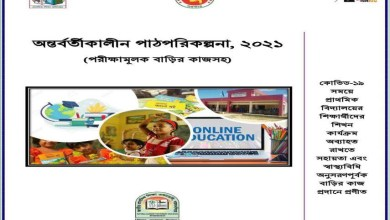 Class 5 Lesson Plan & Home Work